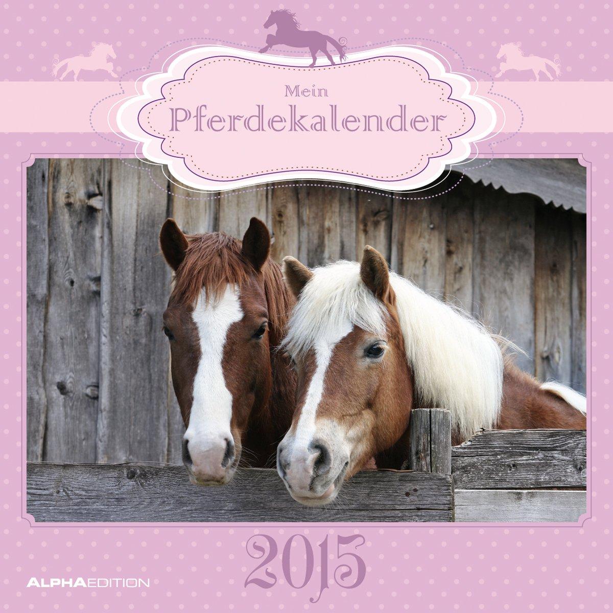 Mein Pferdekalender 2015 - Broschürenkalender (30 x 60 geöffnet) - Tierkalender