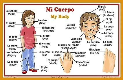 Espagnol Langue Poster Ecole - Mots de parties du corps
