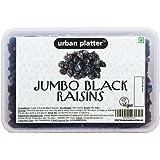 Urban Platter Jumbo Black Seedless Raisins, 500g