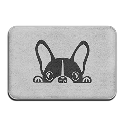 Amazon Com French Bulldog Doormat Outdoor Fashion Door Mats