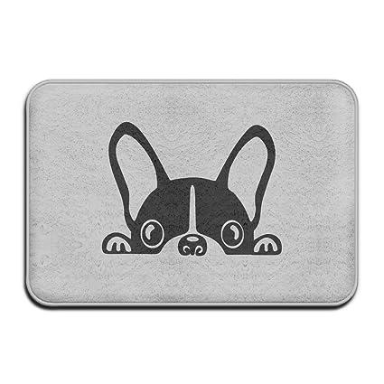 Amazon Com French Bulldog Doormat Outdoor Fashion Door Mats