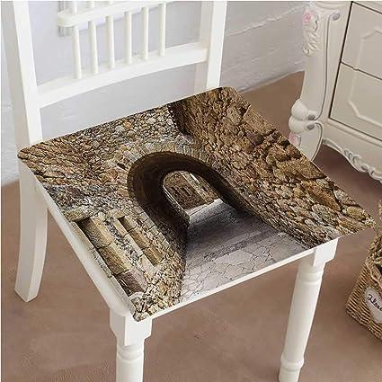 Amazon.com: Mikihome Outdoor Chair Cushion Historic Street ...