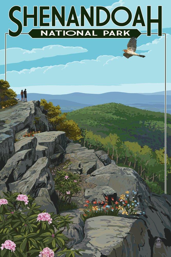 【送料無料キャンペーン?】 Shenandoah国立公園、バージニア州 – Art ハイカーand x Hawk Canvas Tote Bag ハイカーand LANT-42279-TT B00N5CR2GU 9 x 12 Art Print 9 x 12 Art Print, 八幡西区:503c7e6e --- arianechie.dominiotemporario.com