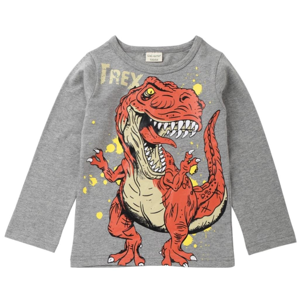 Wesracia Baby Boy Outfits Long Sleeve Dinosaur Letter Print T-Shirt Top Shirts Tee (Gray, 120)