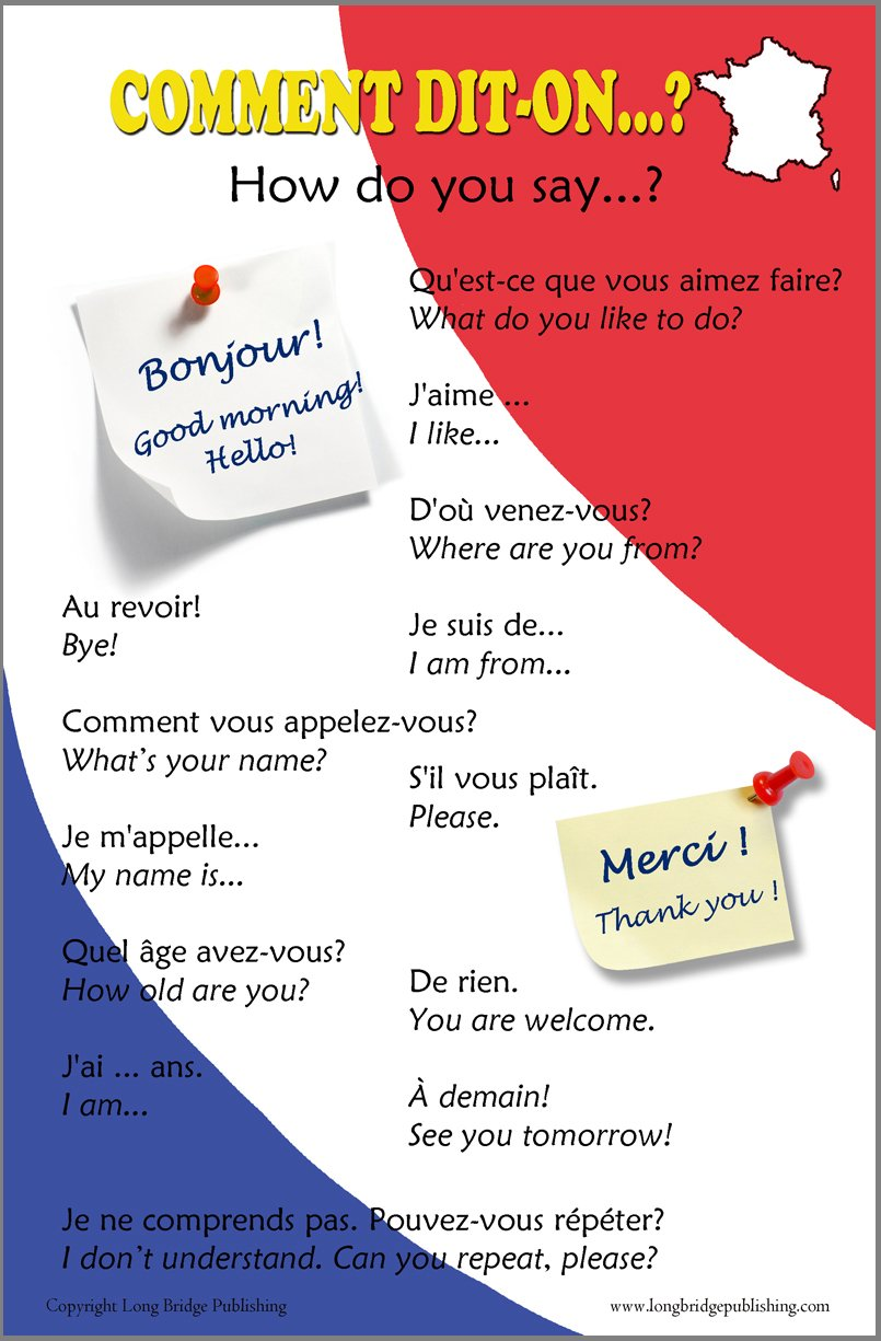 Amazon French Language Poster Greetings And Common Phrases