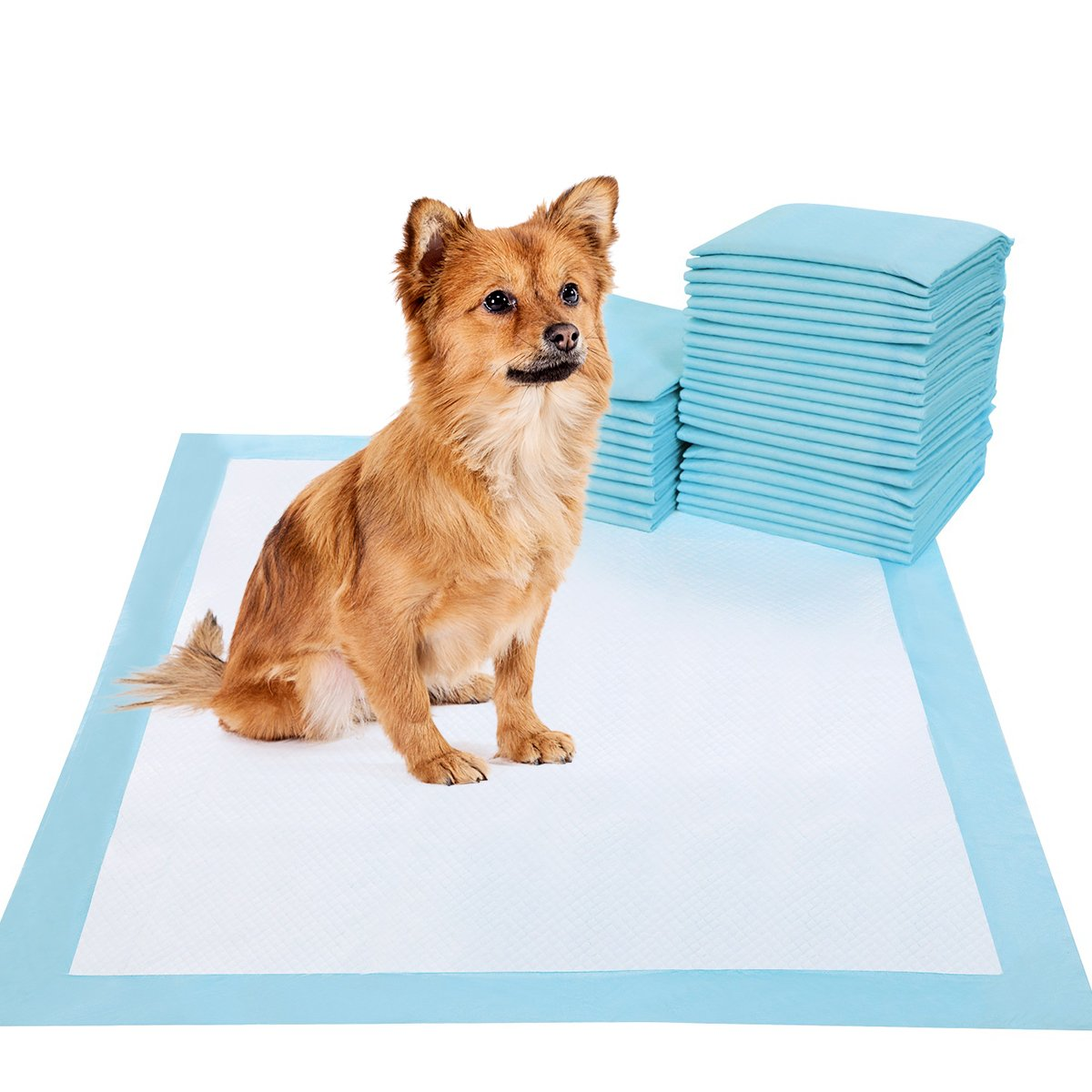 BESTLE Pet Training and Puppy Pads Pee Pads for Dogs 22''x23''-100 Count Super Absorbent & Leak-Free