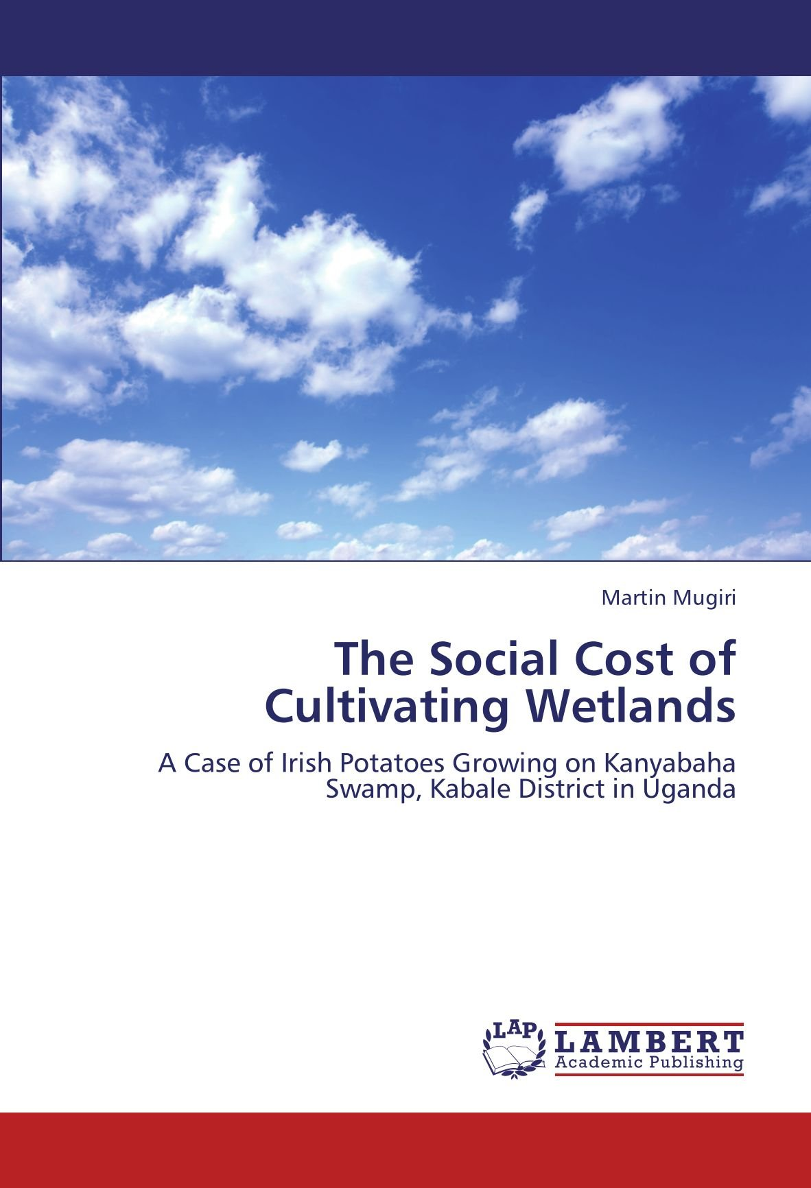 The Social Cost of Cultivating Wetlands: A Case of Irish Potatoes Growing on Kanyabaha Swamp, Kabale District in Uganda PDF