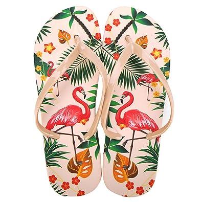 46e6cf496bb089 Women s Flamingo Flip Flops Beach Flat Thong Sandal No-Slip Slippers (5 B(