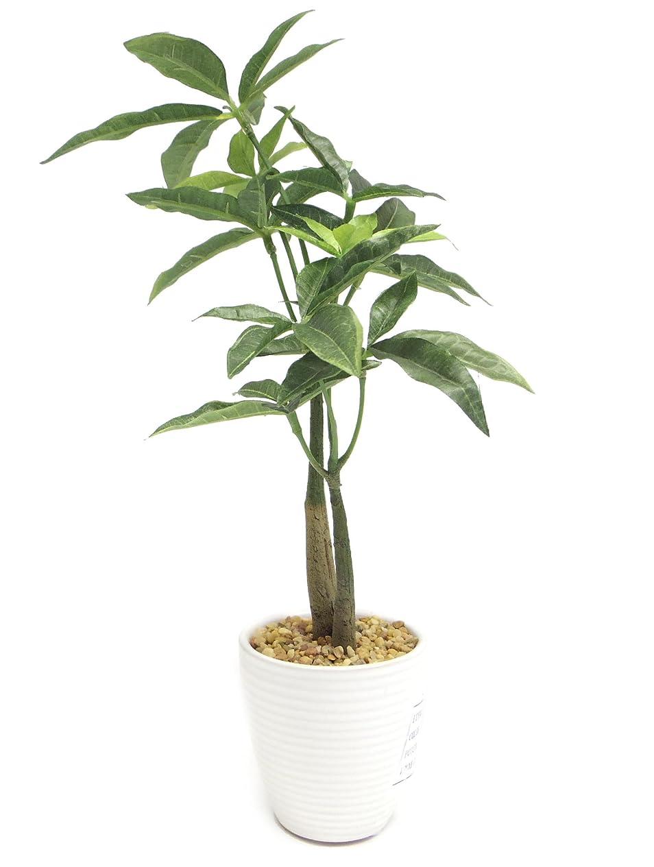 管理チャップ信じる【SCGEHA】 フェイクグリーン インテリア イミテーション 人工 観葉植物 壁掛け 癒し 造花 4カラー