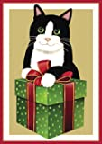 Entertaining with Caspari Christmas Cat With Gift Box Christmas Cards (Box of 16), Green
