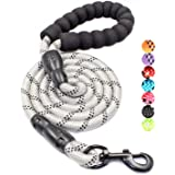 BAAPET 4/5/6 FT Strong Dog Leash with Comfortable Padded Handle and Highly Reflective Threads for Small Medium and Large Dogs