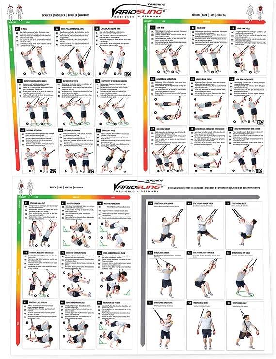 Variosling® Gran Póster/Cartel de Entrenamiento en Suspensión con 54 Ejercicios | Plan/Rutina/instrucción del Entrenamiento Funcional/Muscular | Dos ...