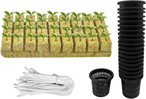 Iceyyyy 76Pcs Hydroponics Mesh Net Cup Kit - 20 Packs 2 Inches Slotted Mesh Net Pot Cups, 36Packs 1.5x1.5x1.5Inch Rockwool Starter Plugs, 20 Article Self Watering Cotton Wick Cord for Hydroponics
