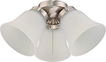 Ceiling fan lights are a great alternative if you do not have enough budget for a chandelier