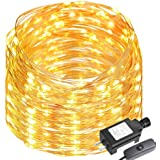 LE 65ft 200 LEDs Copper Wire LED Warm White Fairy String Lights Waterproof String Lights Firefly Lights for DIY Garden, Patio, Wedding,Tree, Party, Christmas, Thanksgiving (Power Adaptor Included)