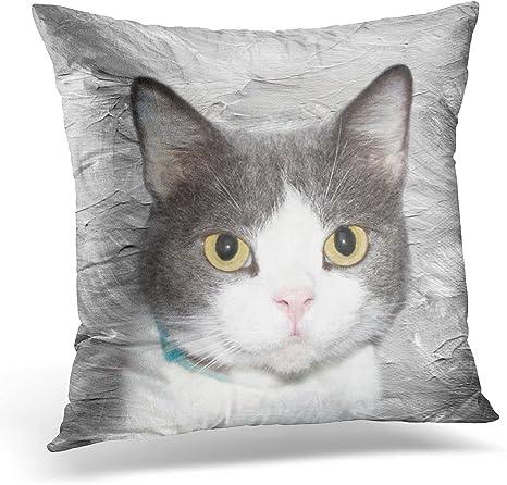 Amazon Com Torass Throw Pillow Cover Cat Gray And White Tuxedo Face Decorative Pillow Case Home Decor Square 20x20 Inches Pillowcase Home Kitchen