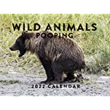 Wild Animals Pooping 2022 Wall Calendar Funny Gag Gift Nature Calls Pooping Animals Calendar Large 18 Month Calendar Monthly