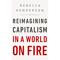Reimagining Capitalism in a World on Fire (English Edition)