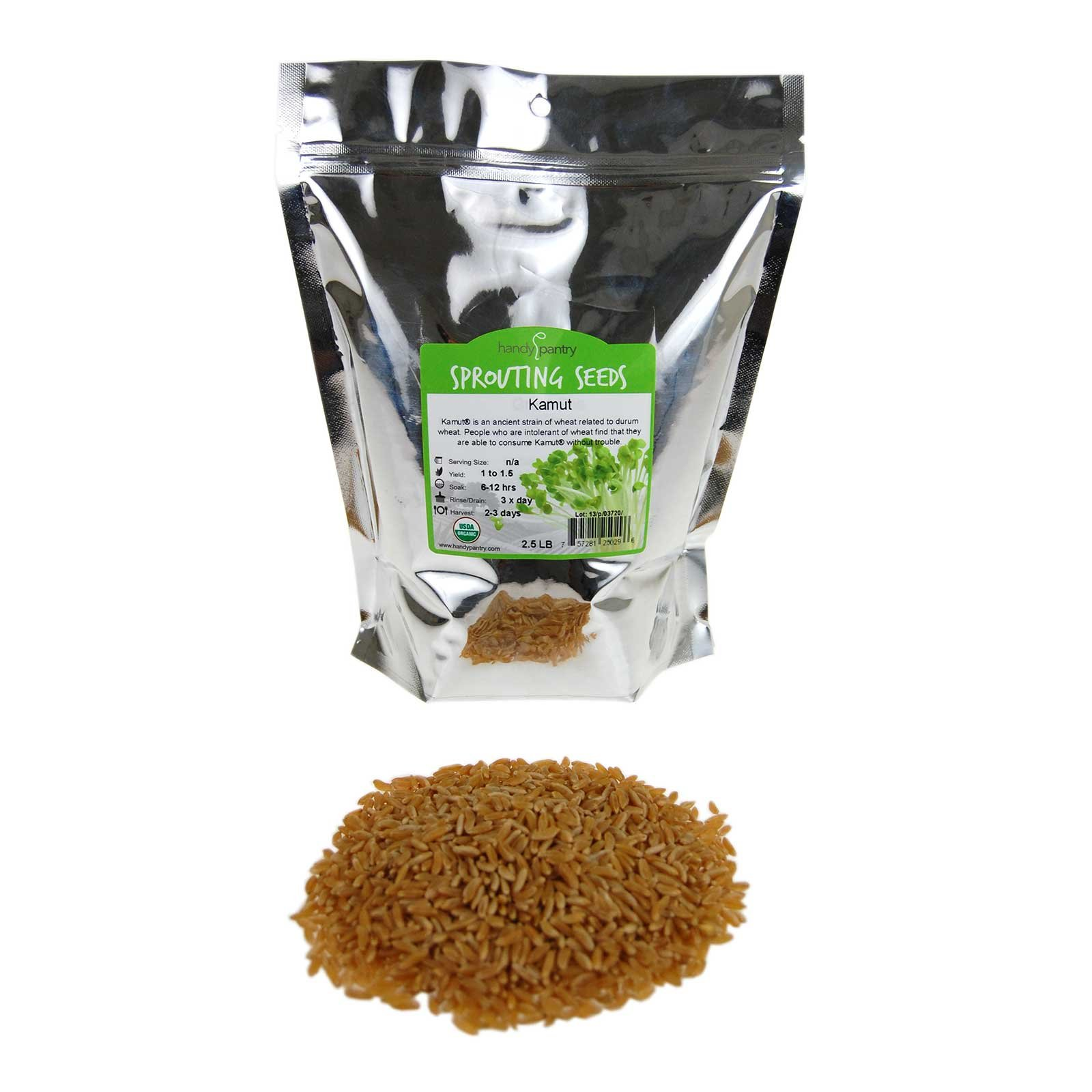 Organic Kamut Seed- 2.5 Lb- Kamut Grain Seeds- For Growing Kamut Grass, Flour, Bread, Baking, Cooking, Food Storage, Sprouting by Handy Pantry (Image #1)
