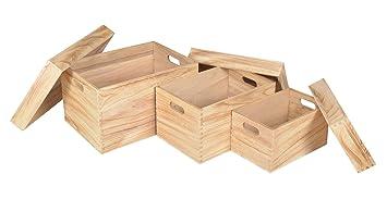 Holzkiste natur 6er Set Aufbewahrung Größte Kiste ca 40 x 30 x 22 cm Neu