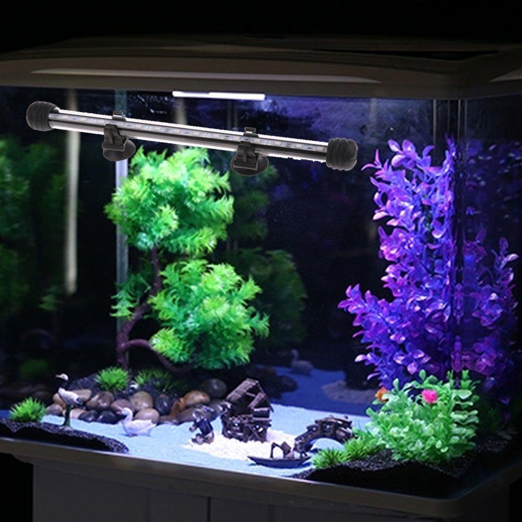 FLAMEER Luminarias LED Sumergibles, Iluminación con Luz, Durable, Conveniente para Acuario - Luz Azul - 28cm: Amazon.es: Jardín