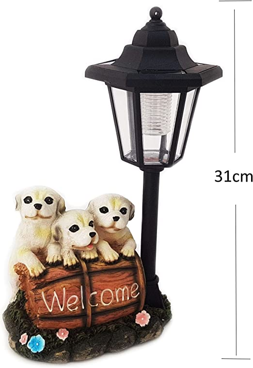 Gnomo Stube de colección hundewelpen perro con farol 31 cm Solar Perros Figura de jardín: Amazon.es: Iluminación