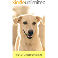 cute animal photo book (Japanese Edition)