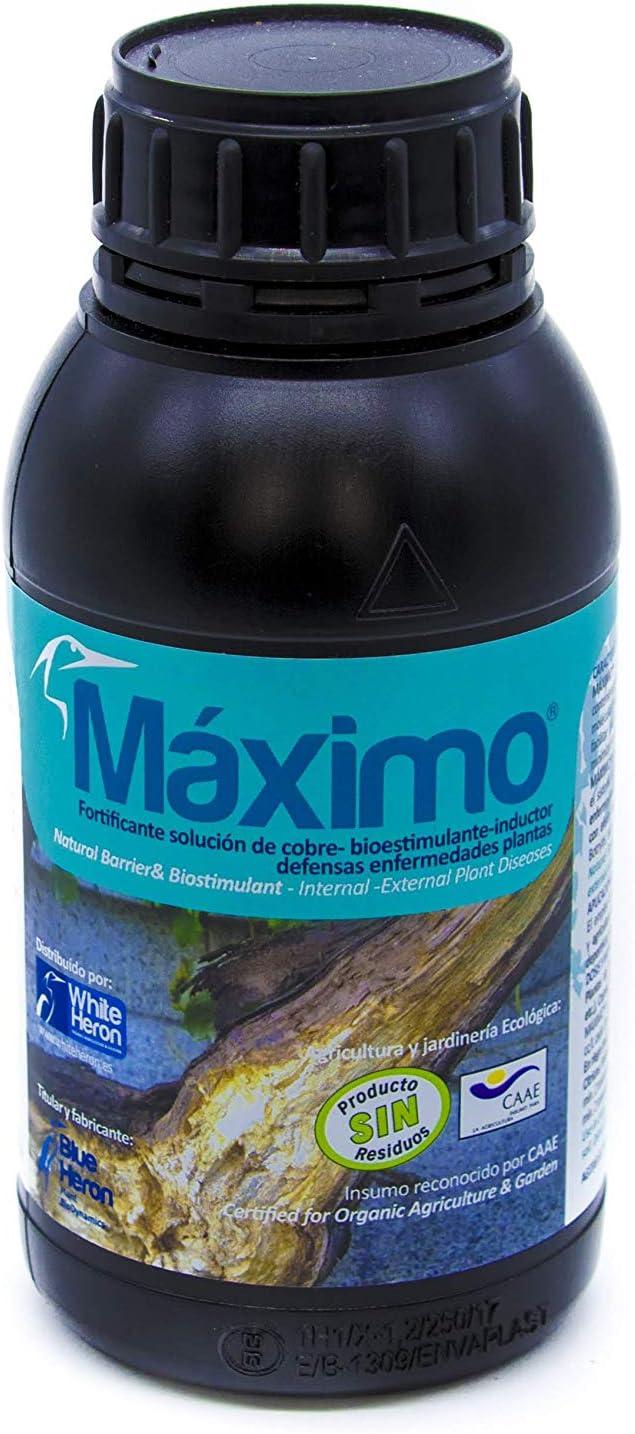 MAXIMO®+IRIDIUM® (1.250 m2); Fungicidas naturales-Enfermedades/Oidios/Mildius/Hongos internos-externos plantas. Ecológico