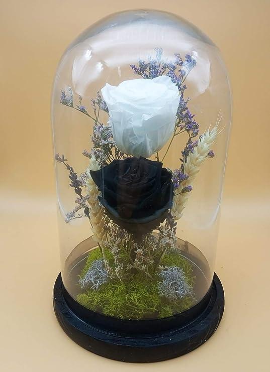 Rosa eterna Blanca. Rosa eterna Negra. Cupula de Rosas Naturales preservadas, con decoración de Verdes y Flores preservadas. Altura 30 cm. Hecho en España: Amazon.es: Hogar