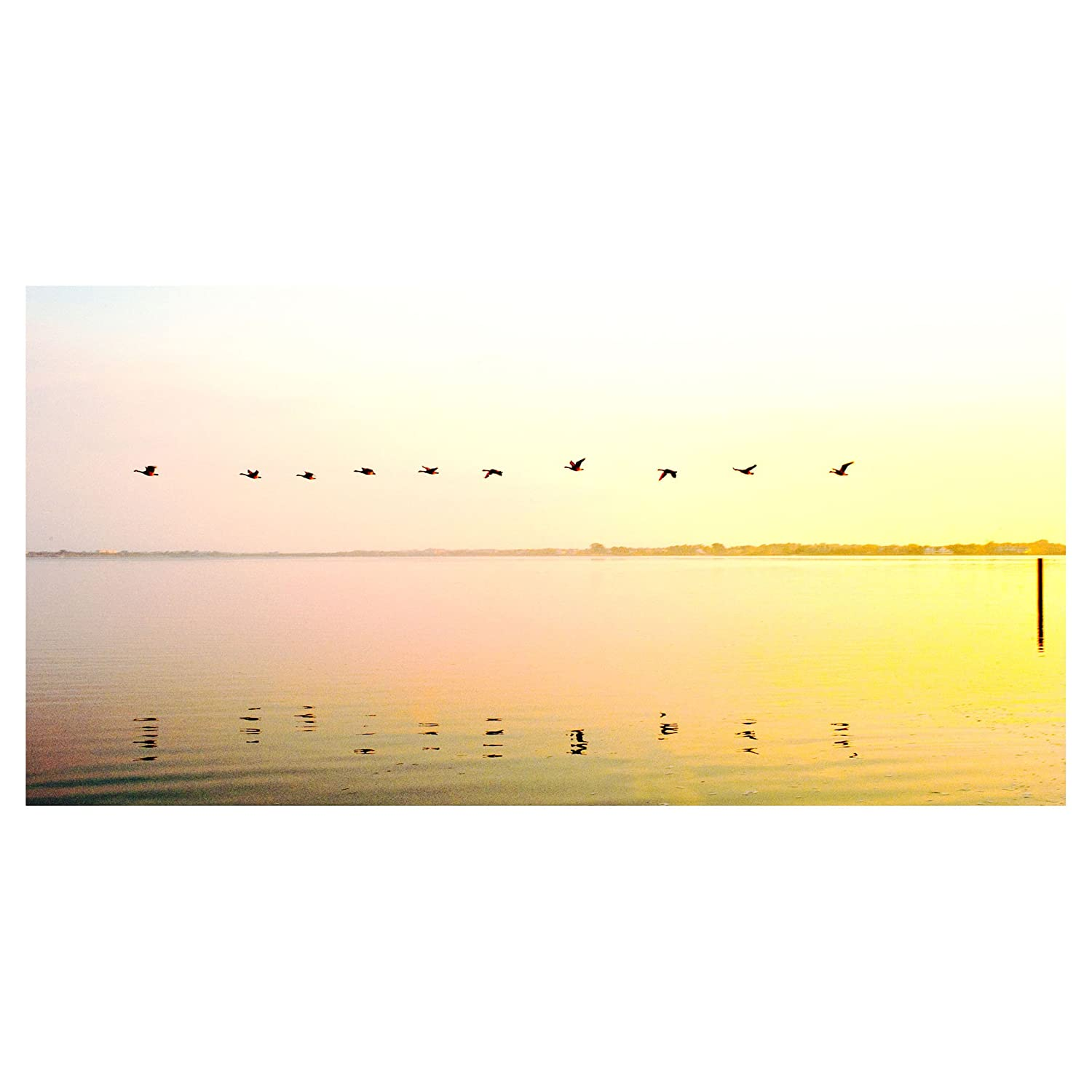 Amazon.com: eFrame Fine Art | Flying Geese by Andy Marcus 15"|1500|1500|?|en|2|c06d4532175b2813794a6ae585be0bdb|False|UNLIKELY|0.28998997807502747