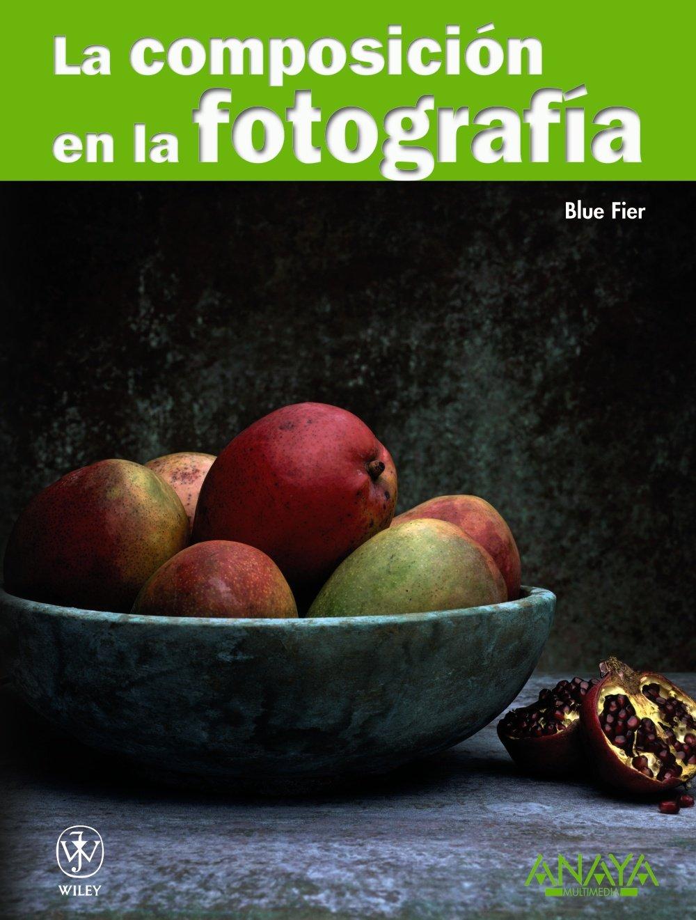 La composicion en la fotografia / Composition Photo Workshop (Spanish Edition) PDF