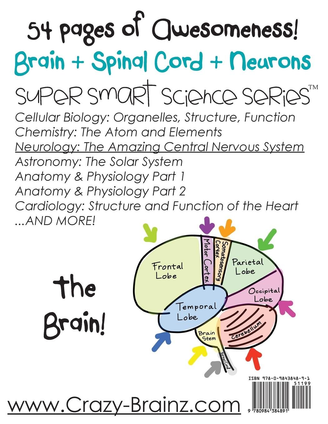 Neurology The Amazing Central Nervous System Super Smart Science