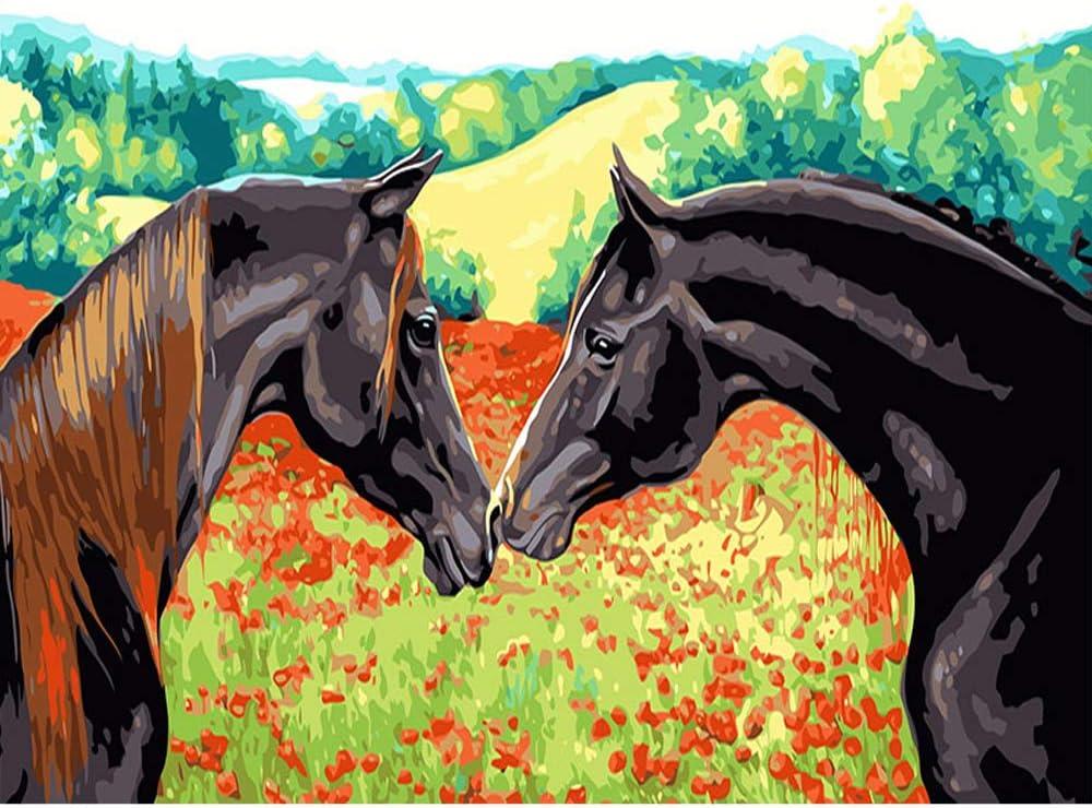 LvJin DIY Pintura Digital Amor de Dos Caballos, Marco de Banda Lona en Blanco y Negro, 16 * 20 in, Herramientas de Pintura de Arte, Pintura de Lona para niños