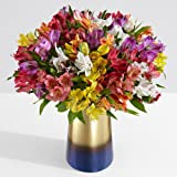 ProFlowers - 25 Count Multi-Colored 100 Blooms of Holiday Cheer with Large Ginger Vase w/Free Clear Vase - Flowers