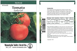 Tomato Garden Seeds - Early Girl Hybrid - 10 Seed Packet - Non-GMO, Vegetable Gardening Seed
