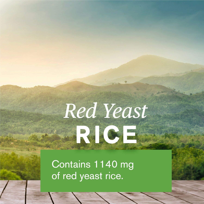 Amazon.com: Nature 's Sunshine rojo Levadura Rice (120 ...