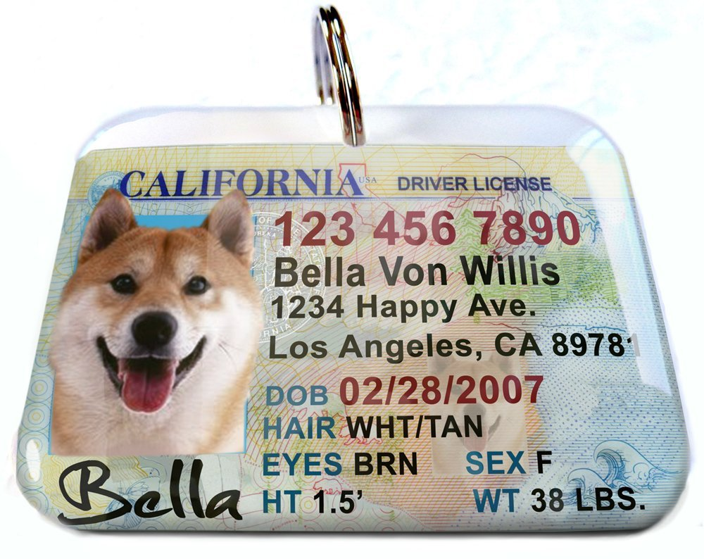 ID4Pet New California Driver License Pet Identification Tag for Cats or Dogs (Large 2.00'' x 1.50'') by ID4Pet
