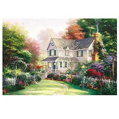 Kanzd Jigsaw Puzzle 1000 Pieces for Adults, Vintage Landscape Pattern Adult Children Puzzle Puzzle Intelligent Educational Toy Gift (A): Toys & Games