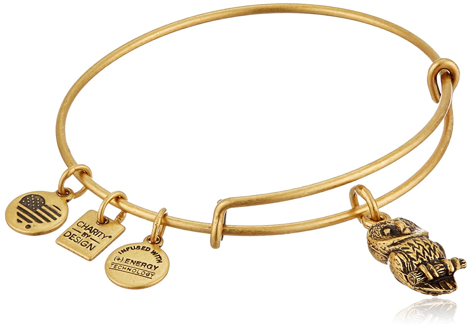 Amazon.com: Alex and Ani Charity By Design Ode To The Owl ...