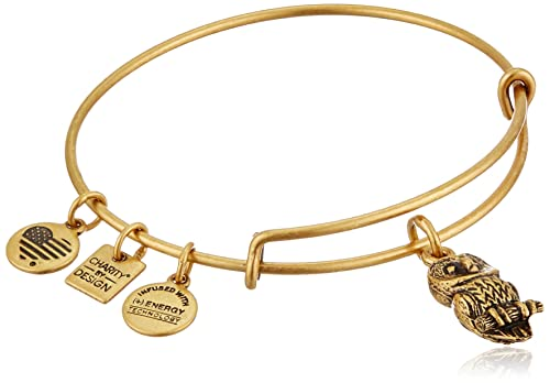 Alex and Ani Women's Charity By Design, Owl II Charm Bangle Bracelet, Rafaelian Gold, Expandable