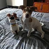 Carletto Ty 96294/ /Mascotas MAX/ /Terrier 25