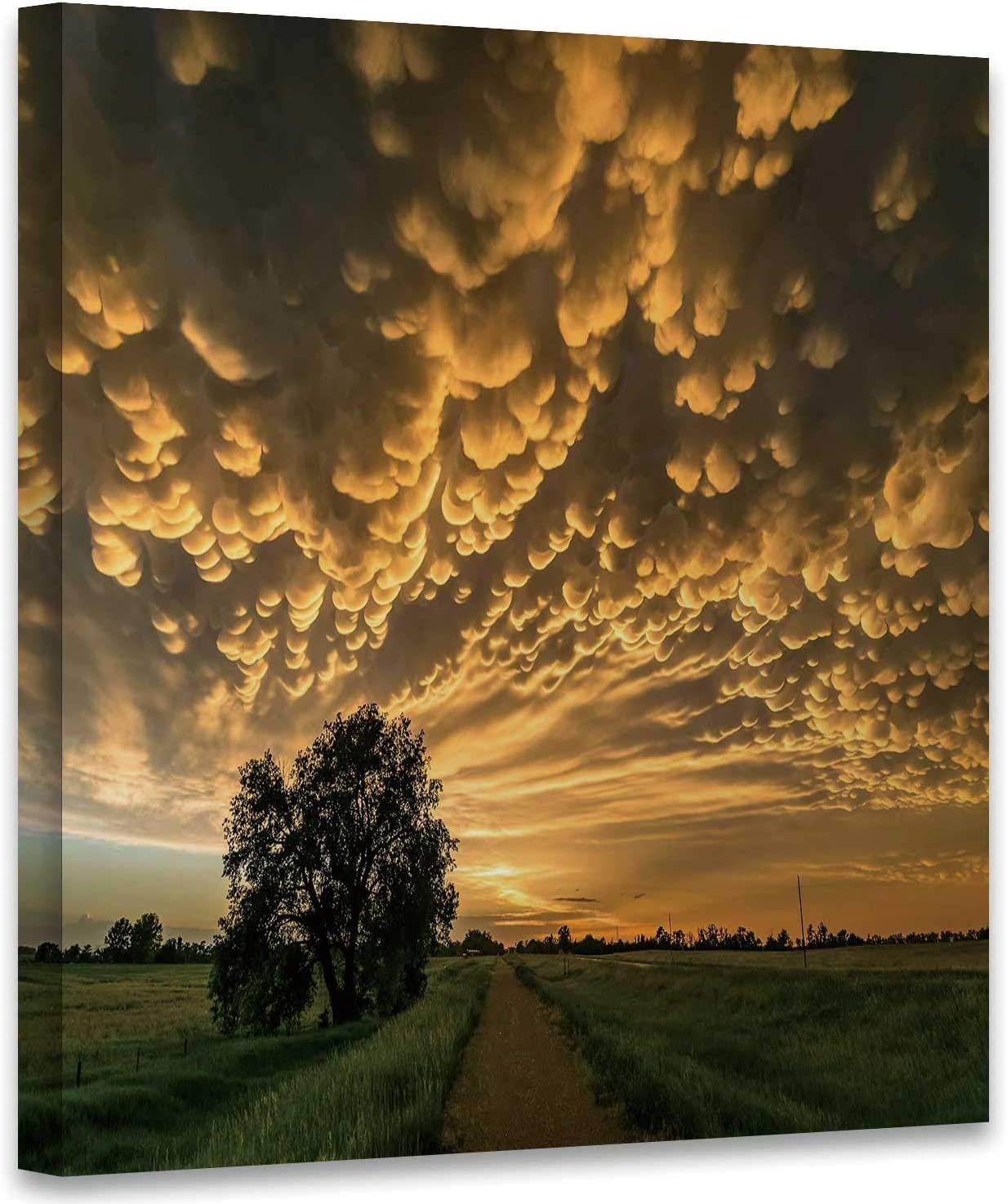 Hitecera Mammatus Clouds at The Back of a Severe Thunderstorm Over Northern Nebraska Nebraska,Bedroom Wall Decor USA Canvas Wall Art for Living Room 1 Panel 12x12