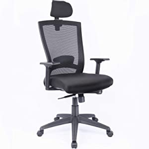 Ergonomic High-Back Mesh Office Executive Desk Chair with Adjustable Headrest, Arms, and Lumbar Support