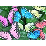 Craft Butterflies - Set of 12 Butterflies with Feather Like Wings Clips - Assorted Colors - Wedding Decorations