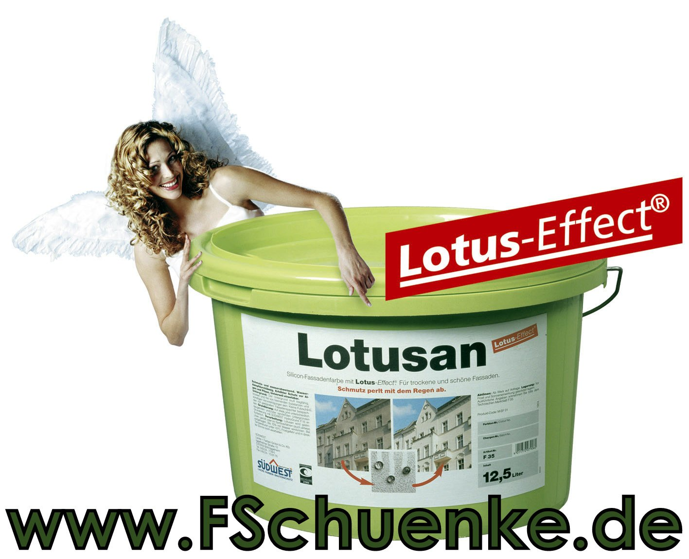 SÜDWEST Lotusan filmkonserviert F38 weiss 9110 12,5l Verbrauch: 100 ...