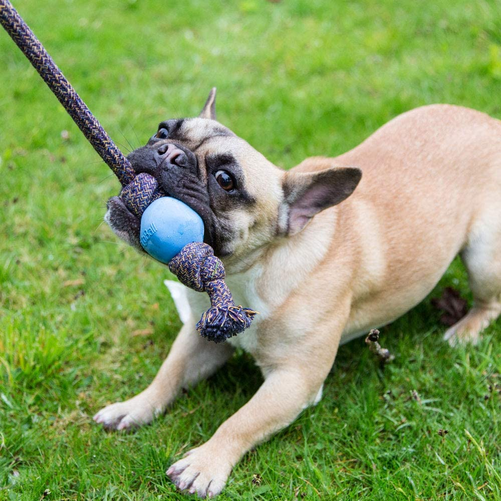 Pink Natural Rubber Ball and Cotton Rope Tug and Chew Toy for Dogs Beco Ball on Rope L