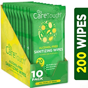 Care Touch Alcohol Free Hand Sanitizer Wipes - 10 Travel Packs of 20 Count Each - Antibacterial Moisturizing Sanitizing Wipes with Vitamin E Aloe for Baby to Adult 200 Wipes Total