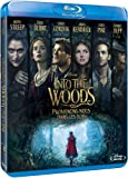 Into the Woods [Blu-ray: Audio en anglais , sous titres en anglais et francais]