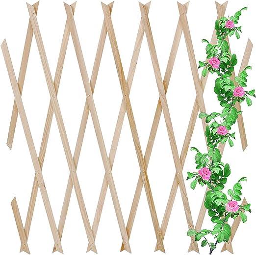 Jago - Celosía extensible de madera como soporte para enredaderas ...