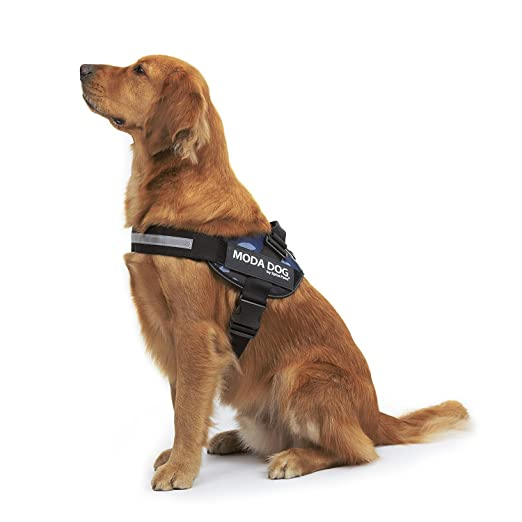 7 opinioni per Splink Pettorina Per Cane Cani Animali Pet Imbracatura Durevole e Regolabile